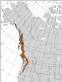 L71 Map 12-N Cupressus nootkatensis 2.png