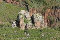 La Palma - San Andrés y Sauces - Barranco de la Fuente 01 ies.jpg