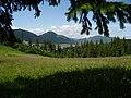 La umbra copacului - panoramio.jpg