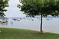 Lac de Morat (5).jpg