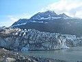 Lamplugh Glacier, Glacier Bay, Alaska.jpg