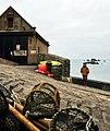 Landewednack TR12, UK - panoramio (7).jpg