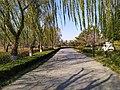 Landscape of Zhuohe River 06.jpg