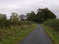 Lane leading south from Burradon - geograph.org.uk - 592117.jpg