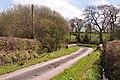 Lane with bridge over the Nant Cwmffrwd - geograph.org.uk - 1249089.jpg