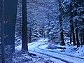 Last Days Of Winter - panoramio.jpg