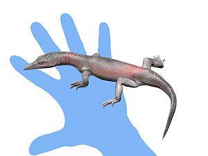 Choristodera - Life reconstruction of Lazarussuchus inexpectatus