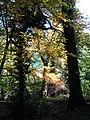 Leigh Woods - panoramio - BarnabyKirsen.jpg