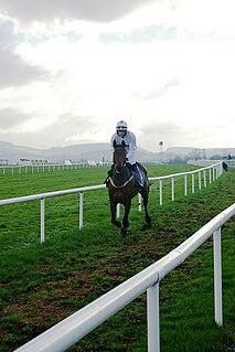 Leopardstown Racecourse horse racing venue in the Republic of Ireland