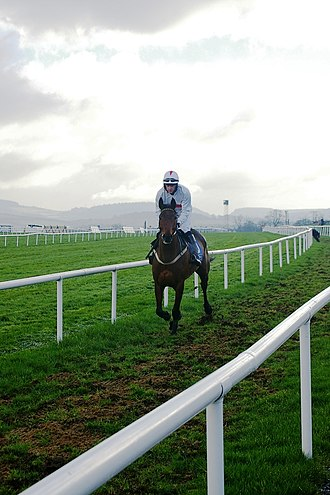 Leopardstown Racecourse - Heading for the start with Wicklow Mountains in background
