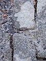Limestone pavement - geograph.org.uk - 1222526.jpg