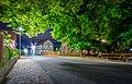 Linde in Himmelsberg bei Nacht 03.jpg