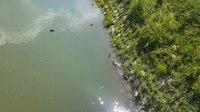 File:Ljubljana 2015-06-28 (2).webm