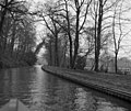 Llangollen Canal alongside Blake Mere - geograph.org.uk - 520149.jpg