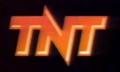 LogotipoTNT1991.png