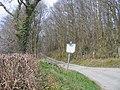 Lon Coediog ger Oakley Park - Wooded lane near Oakley Park - geograph.org.uk - 393614.jpg
