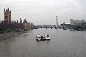 London thames from lambeth bridge 30.01.2012 14-44-36.2012 14-44-36.JPG