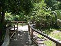 Longwood Senator Park bdwk01.jpg