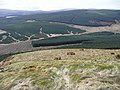 Looking down from Glenalla Fell. - geograph.org.uk - 756893.jpg
