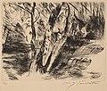 Lovis Corinth, Birch Trees in the Tiergarten, 1920-1921, NGA 153568.jpg