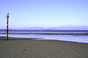 Puget Sound - Low tide on Whidbey Island