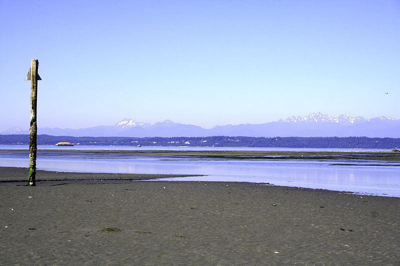 Low tide on Whidbey Island.JPG