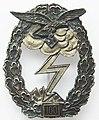 Luftwaffe Ground-Attack Badge.jpg
