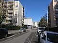 Lyon 6e - Rue Pétrequin (janv 2019).jpg
