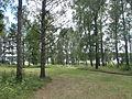 Lyttersta vid sjön Tisnaren 20120727..JPG