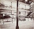 MA I233024 TePapa Otago-Museum-interior full.jpg