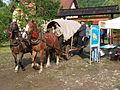 MDDK 2012 - Łosie, Zagroda Maziarska - 26-27 maja 2012 (7300728834).jpg