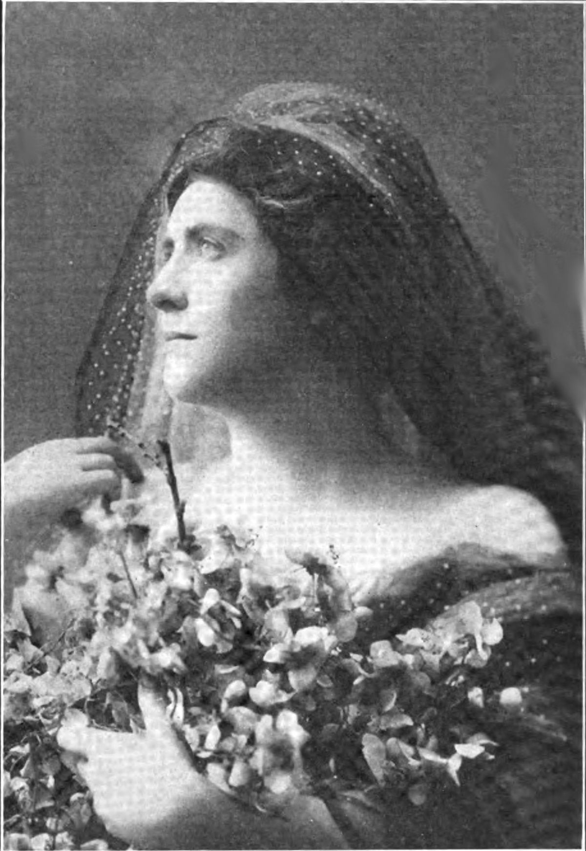 Mabel Bardine
