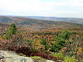 Macedonia State Park's Cobble Mountain summit with Catskill Mountains in background.JPG