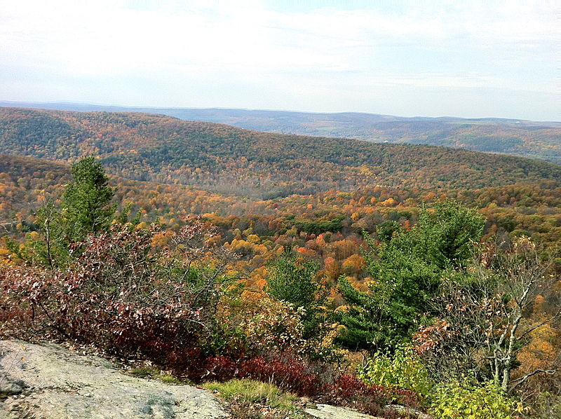File:Macedonia State Park's Cobble Mountain summit with Catskill Mountains in background.JPG