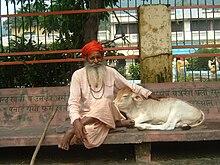 Cattle in religion and mythology - Wikipedia