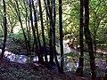 Malom-völgyi patak - panoramio (1).jpg