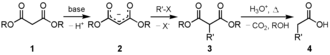 Diethyl malonate - Malonic synthesis