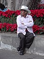 Man in Park - Oaxaca City - Oaxaca - Mexico - 02 (6505734649).jpg