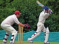 Matching Green CC v. Bishop's Stortford CC at Matching Green, Essex, England 19.jpg