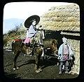 Meiji period Japanese pack horse.jpg