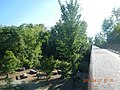 Memphis Greenline @ Wolf River - panoramio.jpg