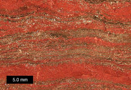 Magnified view of banded iron formation specimen from Upper Michigan. Scale bar is 5.0 mm. MichiganBIF.jpg