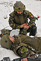 Military and Police Advisory Training II at the Joint Multinational Readiness Center 121202-A-RA799-004.jpg