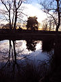 Mirror, mirror on the pond - geograph.org.uk - 660391.jpg