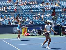 Mirza mattek cincy07.jpg