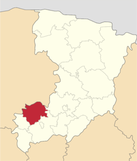 Mlyniv Raion Former subdivision of Rivne Oblast, Ukraine
