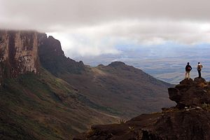 Monte Roraima National Park - Image: Monte Roraima, Roraima