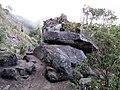 Monte verde - panoramio (1).jpg