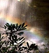 Moore Cove Rainbow.jpg