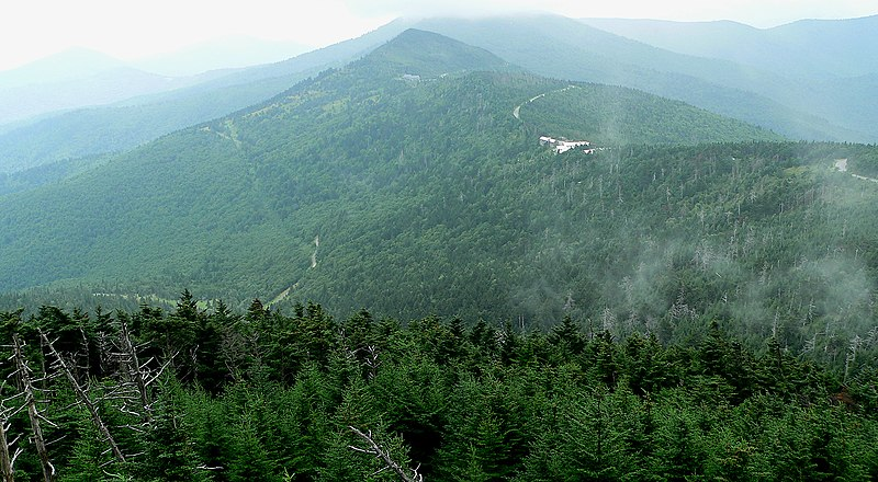 File:Mount Mitchell-27527.jpg